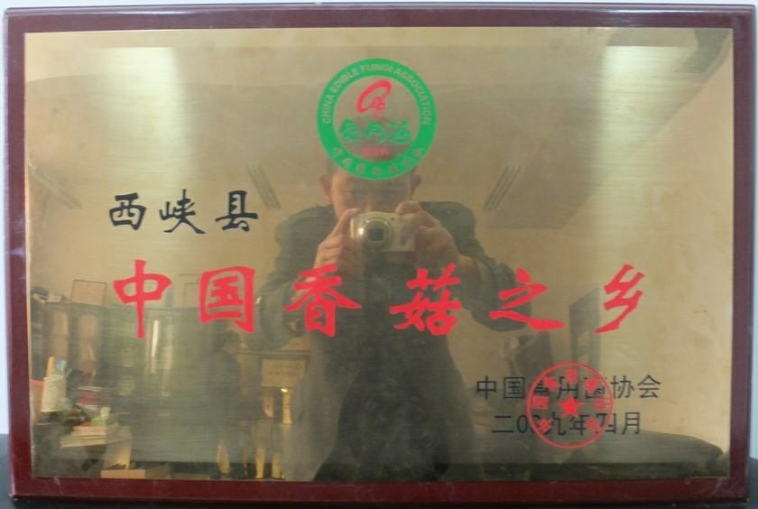中国香菇之乡