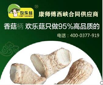 """""""2014年冬西峡香菇脚市场行情价格走势""""分析预测"""