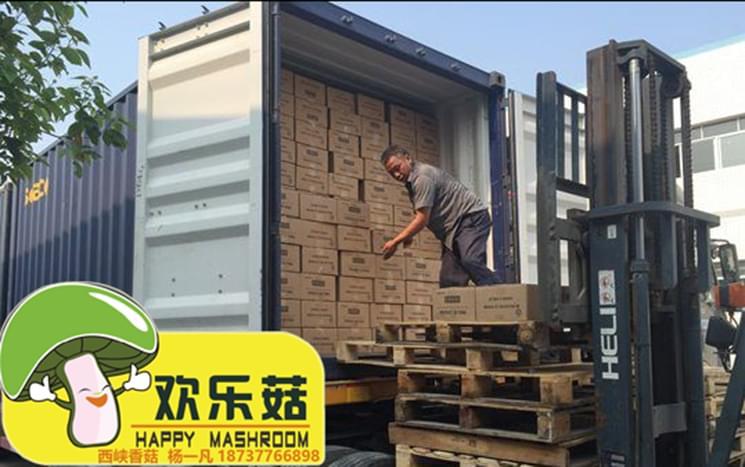 中国香菇批发市场四大家