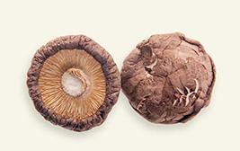 4cm以上厚菇